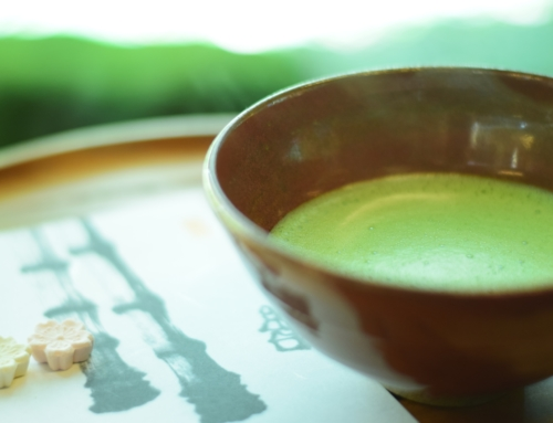 What is so good about Matcha?
